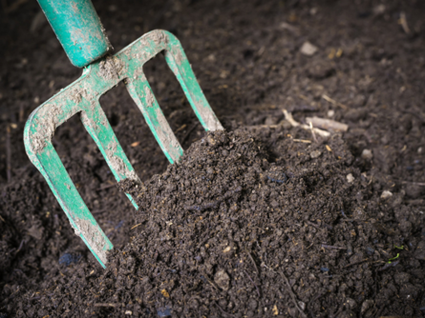 Move Dirt and Topsoil for Your Landscaping Project